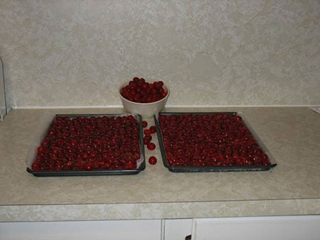 Cherries On Trays And Bowl